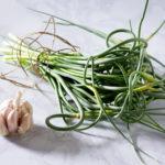 Собранные вовремя стрелки чеснока не выкидывают, они могут стать основой для заготовок, соусов или самостоятельным блюдом